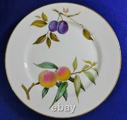 24pc Set Royal Worcester Evesham Gold China Dinnerware Service For 6 England