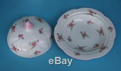 7 Piece Vintage Tea Set SHELLEY FINE BONE CHINA, ENGLAND.'ROSE SPRAY' 13545