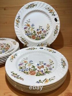 AYNSLEY Cottage Garden Fine Bone China England, Dinner Plates, Set Of 6 NEW