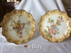 Antique Doulton Burslem 1800s England Set of 2 9 China Plates free shipping
