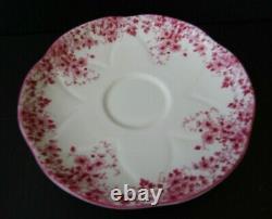 SHELLEY Dainty Pink Daisy Fine Bone China Teacup & Saucer Set England
