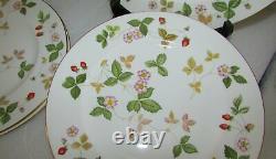 Set Of 10 Wedgwood Wild Strawberry Dinner Plates 10 3/4 Bone China England