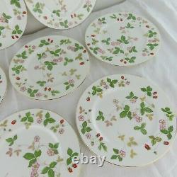 Set of 10 Wedgwood England Bone China Wild Strawberry Dinner Plates 10.75 MINT