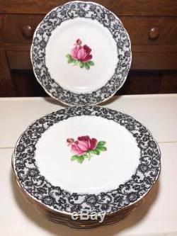 Set of 8 Royal Albert Senorita 10.25 Dinner Plates Bone China Made in England