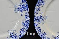 Shelley Dainty Blue Set of 3 Salad Plates England Bone China