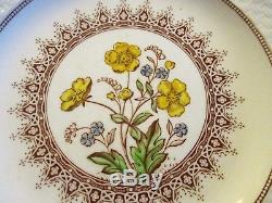 Spode Copeland England Buttercup 40 Pc China Set Brown Yellow. Never used