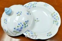 VINTAGE Shelley England Blue Rock 13591 Bone China Delicate Tea Set
