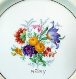 Vtg PARAGON CHINA SET of 12 Dinner PLATES Hand Ptd FLOWERS Botanicals ENGLAND